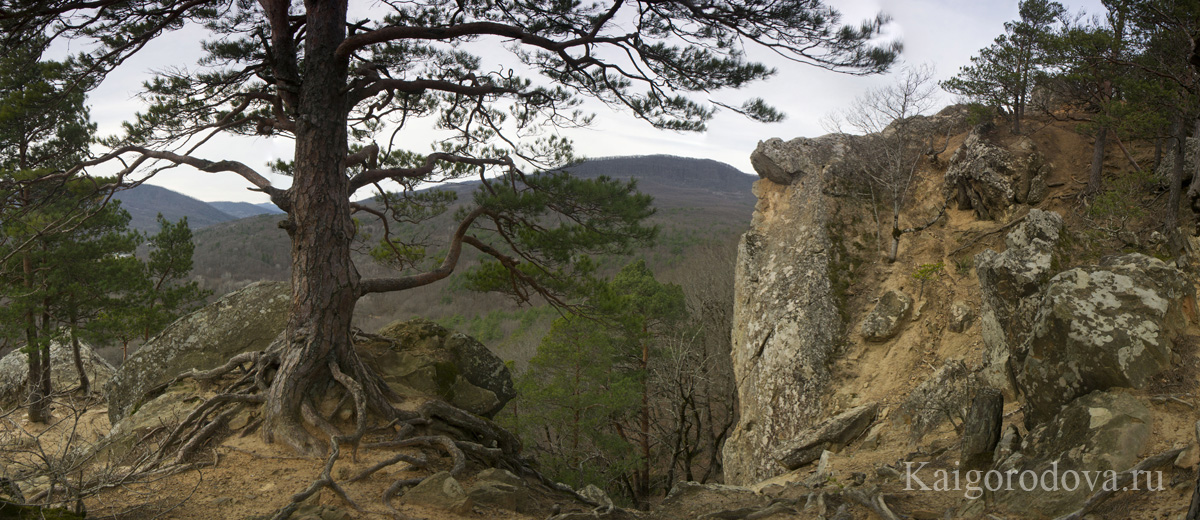 Панорама Природа Краснодарского края